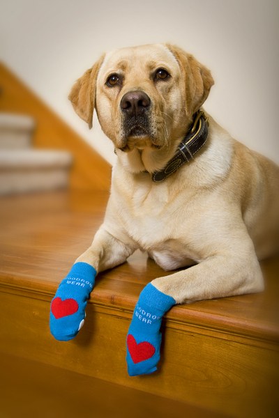 Power Paws Heart Socks