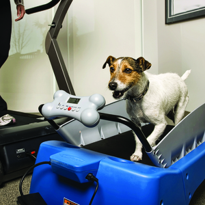 PetZen Small DogTread Dog Treadmill