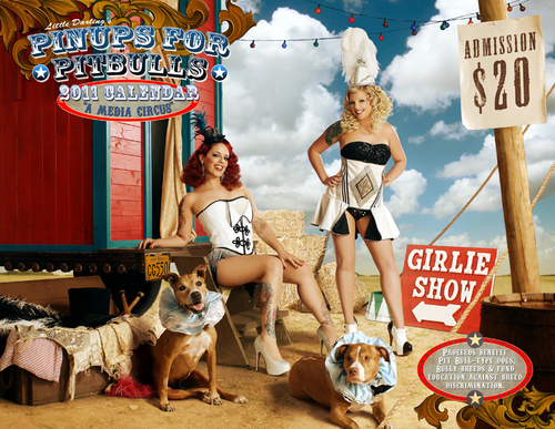 2011 Pinups for Pitbulls calendar cover