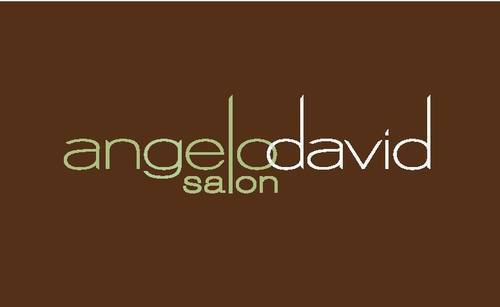 Angelo David Logo
