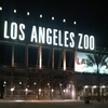 Sunset Safari at the LA Zoo Review - Seeing Animals Upclose and Personal