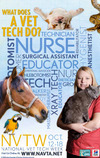 National Veterinary Technician Week with Penn Foster
