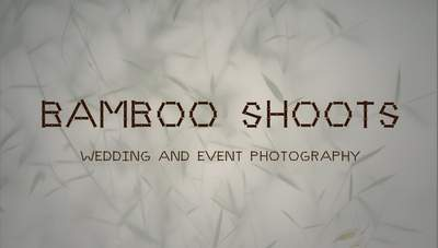 Bamboo Shoots Photography